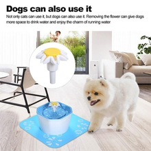 Pet Drinking Fountains Dog Water Dispenser Saft Hygienic USB Charging Plastic Automatic Circulation Bowl Electric