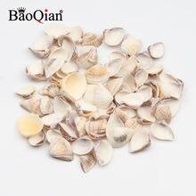 Conchas de mar naturales, decoración artesanal para paisajismo DIY, acuario, adornos para el hogar, 30 uds., 10-20mm