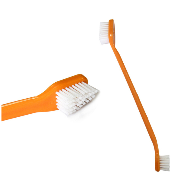 Toothpaste & Toothbrush Set 6