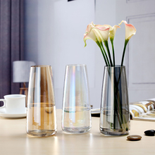 Nordic INS Wind Aurora Symphony Glass Vase Hydroponic Transparent Flower Dried Water Flower Small Vase Room Home Decoration