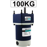 60W Micro Geared Reducer Motor DC 12V 24V Low Speed 10 To 600RPM High Torque 3.2 To 100KG Adjustable Speed Reversible Motor