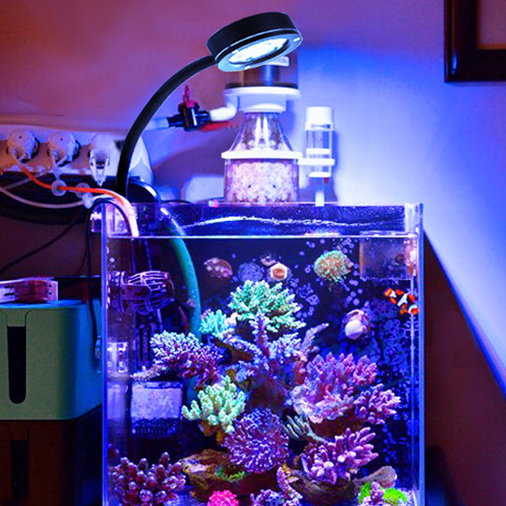 Marine Aquarium LED light coral SPS LPS Aquarium sea Reef Tank Blue White Beginner 100v-240v For 30-50 cm Sea tank