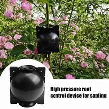 Urządzenie do ukorzeniania roślin wysokociśnieniowe szczepienia propagacyjne pudełka kulkowe rosnące skrzynie hodowlane artykuły ogrodowe Dropship