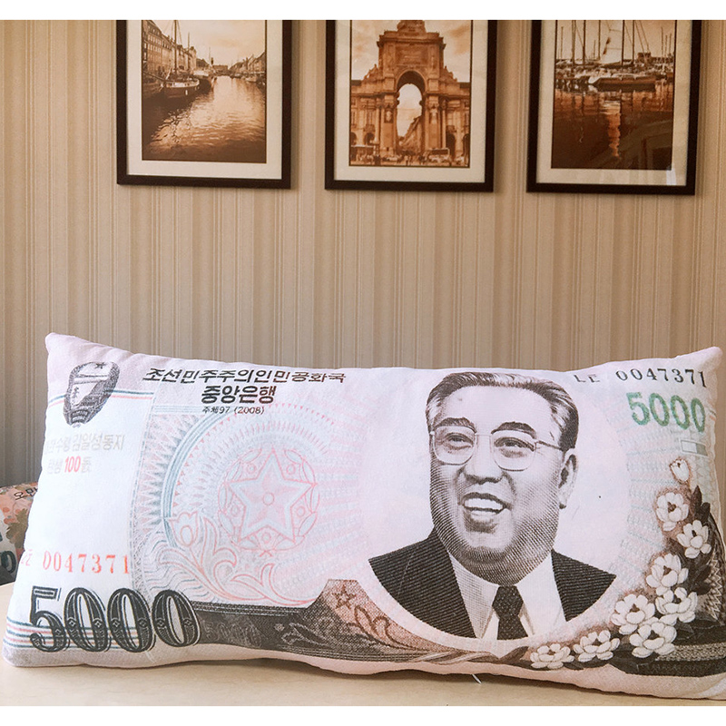 Money Plush Pillows 4