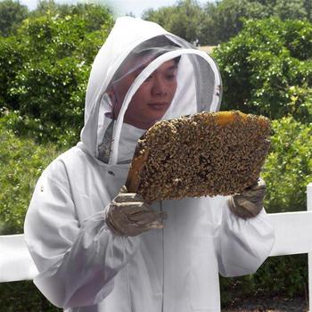 Cotton Full Body Beekeeping Clothing Veil Hood Hat Anti-Bee Coat Special Protective Clothing Beekeeping Bee Suit Equipment