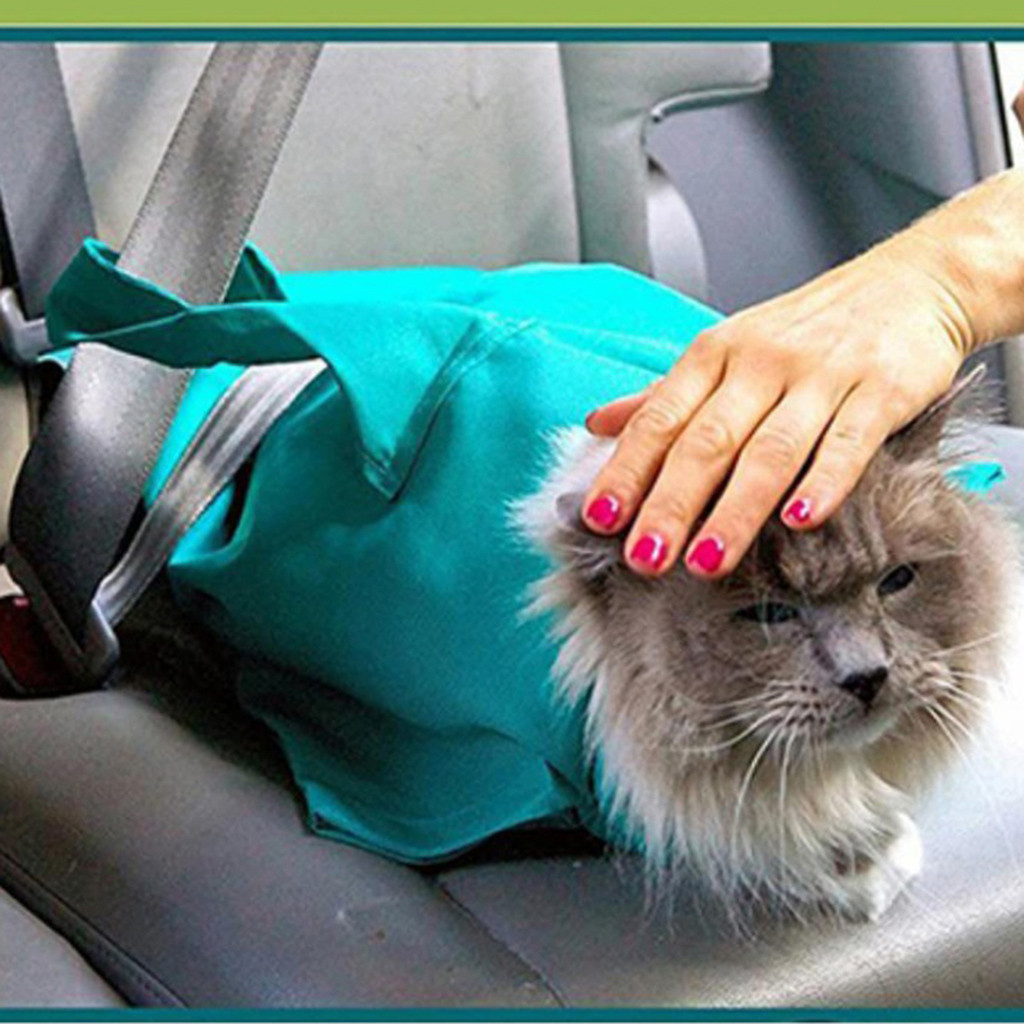 Fashion New Cat Dog Portable Shoulder Diagonal Tote Pet Out cat Pet Package Storage Bag Home Storage Organization thumbnail