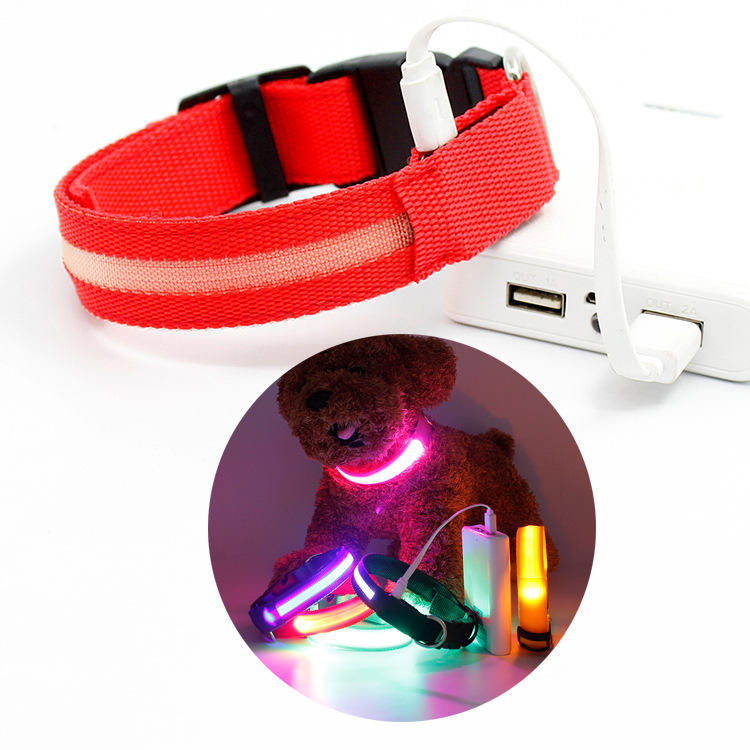 Supply Of Goods LED Neck Ring USB Charging Shining Dog Neck Ring Pet Supplies Multi-color Dongguan