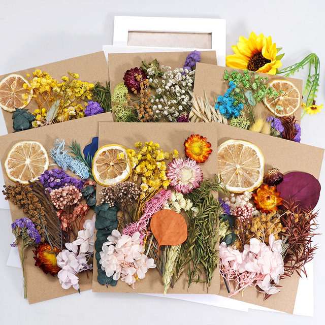 1 Box Real Dried Flower Dry Plants For Aromatherapy Candle Epoxy Resin Pendant Necklace Jewelry Making Craft DIY Accessories