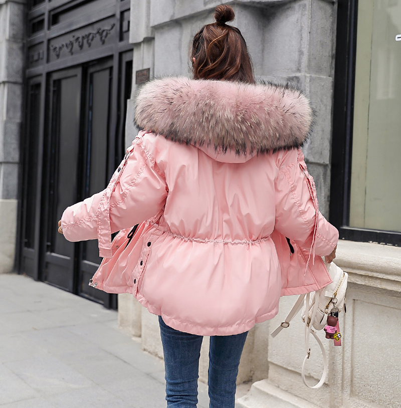 Korean Style 2019 Winter Jacket Women Cotton Padded Hooded With Fur Fe_C2_23