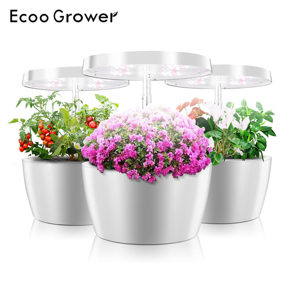Hydroponics System Intelligent Box With Grow Light Ecoo Grower Indoor Home Garden Nursery Pots Educational Toys For Children