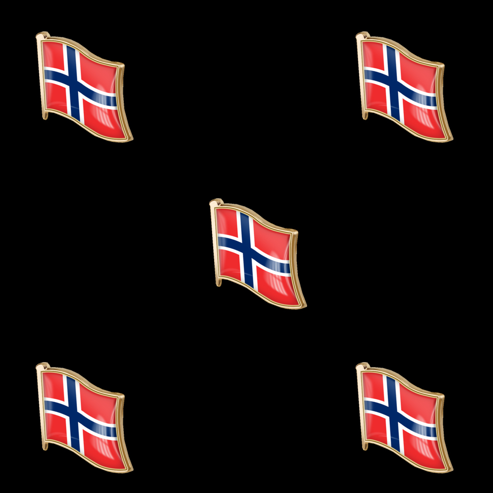 pins pin/'s flag national badge metal lapel backpack hat button vest norway