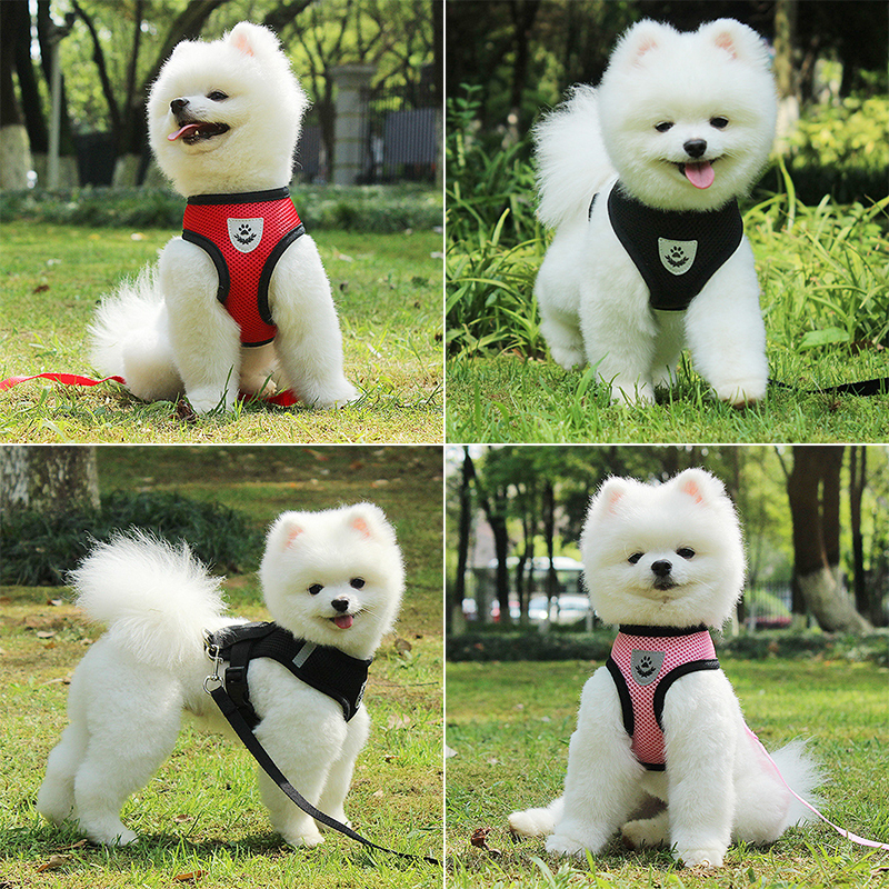 Dog Accessories Breathable Mesh Dog Harness and Leash Set Puppy Cat Harness Vest For Small Dogs Chihuahua arnes para perro 35