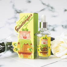 Facial Serum Witch Piggy Hell Pore Control Hyaluronic Acid 97% High Moisturizing