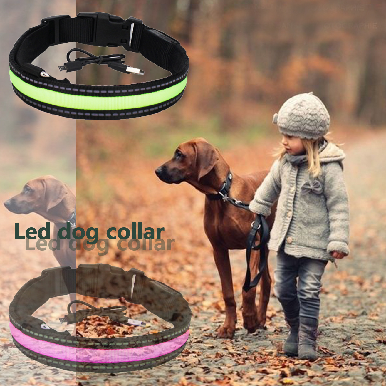 LED Dog Neck Ring Reflective Waterproof Pure Nylon Chargeable Luminous Collar Teddy Golden Retriever Bichon Pet Supplies