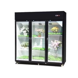 Commercial Flower Cabinet Fresh-Keeping Cabinet Refrigerator Display Cabinet Flower Shop Refrigerator Flowers Fresh-Keeping