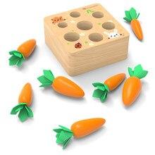 Ahşap montessori eğlenceli toplama turp oyuncak çocuk bulmaca ekleme havuç oyun bebek oyuncakları erken çocukluk eğitici oyuncaklar hediyeler