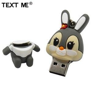 Image 3 - TEXT ME 64GB usb flash drive usb 2.0 4GB 8GB 16GB 32GB  pendrive cute gray pink model rabbit cartoon usb