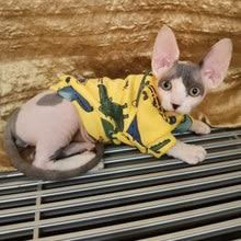Gato de dibujos animados con capucha suéter Otoño Invierno Gato, ropa para gatos, Katten Kedi jerseys Mascota disfraz para mascotas, gatos traje de ropa
