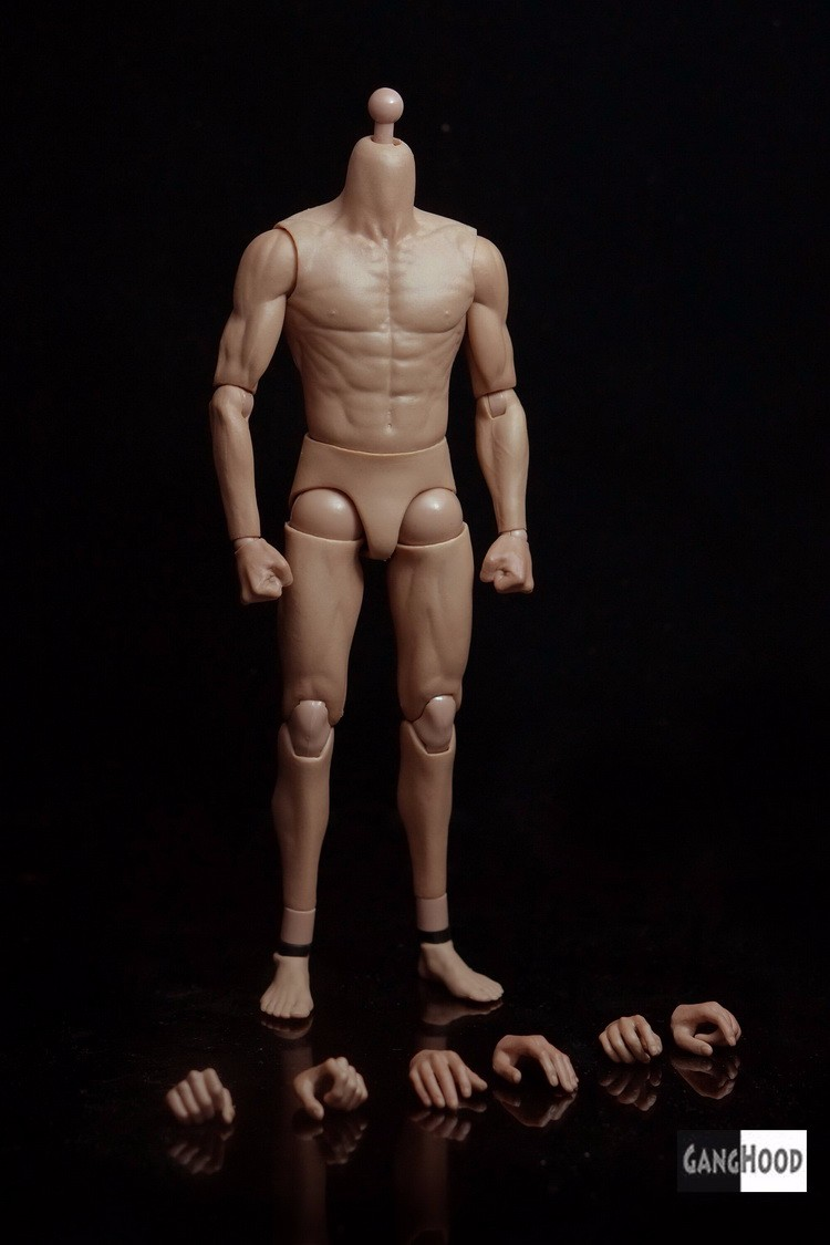 1/6 Scale G002 Asian Male Body Action Figure for Muscular Model Bruce Lee Similar to HT DX04 With Extra Hands image