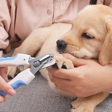 Hot Pet Dog Cat Stainless Nail Care Dogs Toe Clippers Grooming Scissors Steel Claw Supplies Pets Nails File(China)
