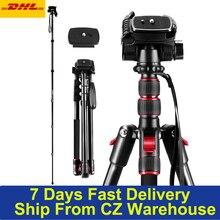 2-in-1 mini Kamera Stativ Einbeinstativ Stehen Aluminium Legierung Drehbare Ball Kopf 2m Max. höhe 5kg Last Kapazität mit Tragen Tasche/DSLR