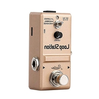 Rowin Ln 332S Loop Station Looper Effects Pedal Unlimited Overdubs 10 Minutes Of Looping, 1/2 Time, And Reverse
