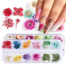 Смешанные сушеные цветы, украшения для ногтей, украшения, натуральные Цветочные наклейки в виде листьев, 3D дизайн ногтей, лак, аксессуары для маникюра, TRF01-10