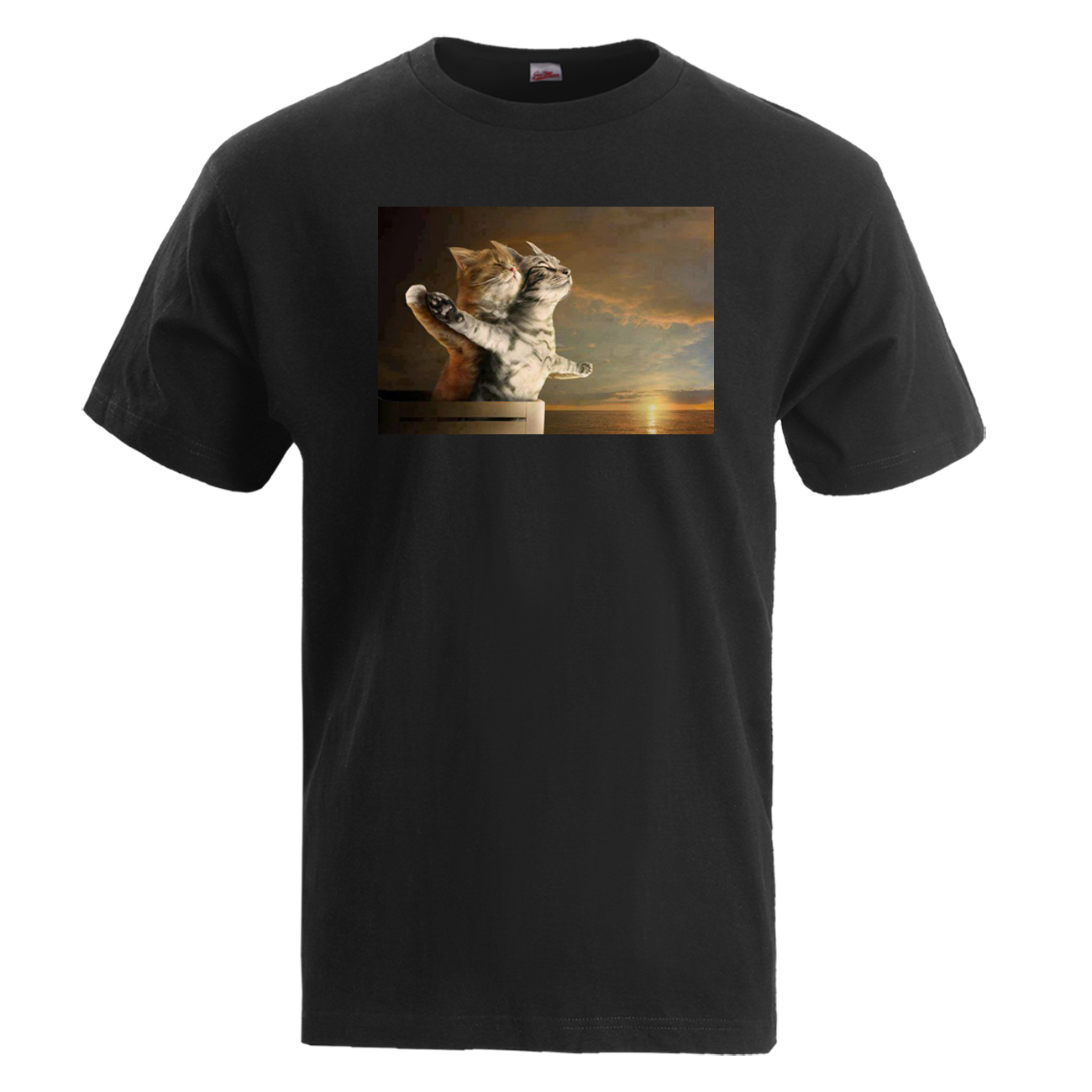 Titanic Jack Rose Iceberg Ship Movie Film American Men Women Unisex T-shirt 686