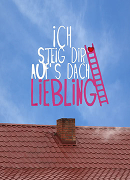 屋顶的浪漫