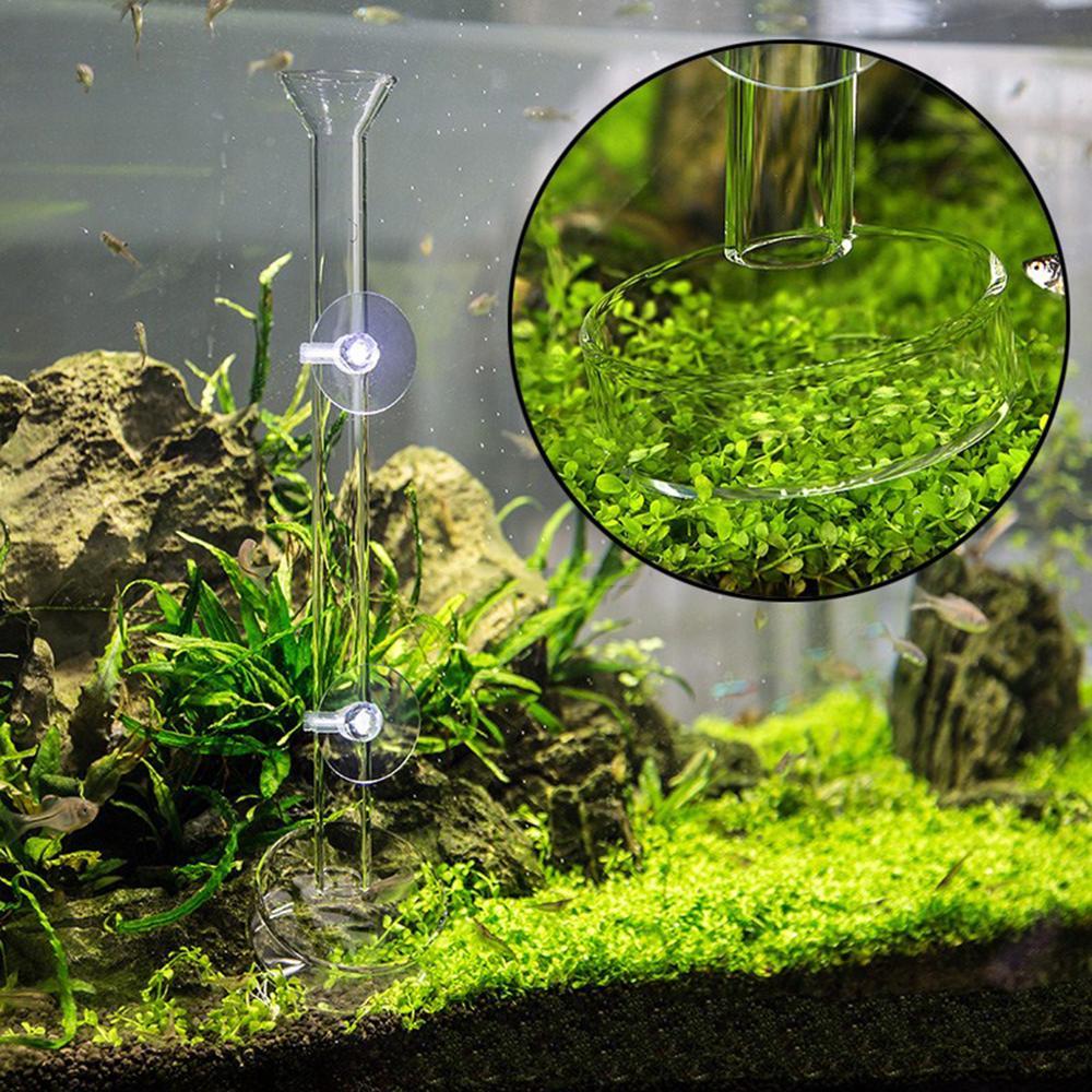 Tube d'alimentation de crevettes avec ventouse 2X, alimentation en verre pour Aquarium 25/30/35/40/45cm de longueur