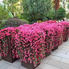 Fausses fleurs en plastique pour décoration de la maison, fausses fleurs pour porte, parterre de fleurs pour salon, vignes artificielles violettes, fleurs en plastique #10