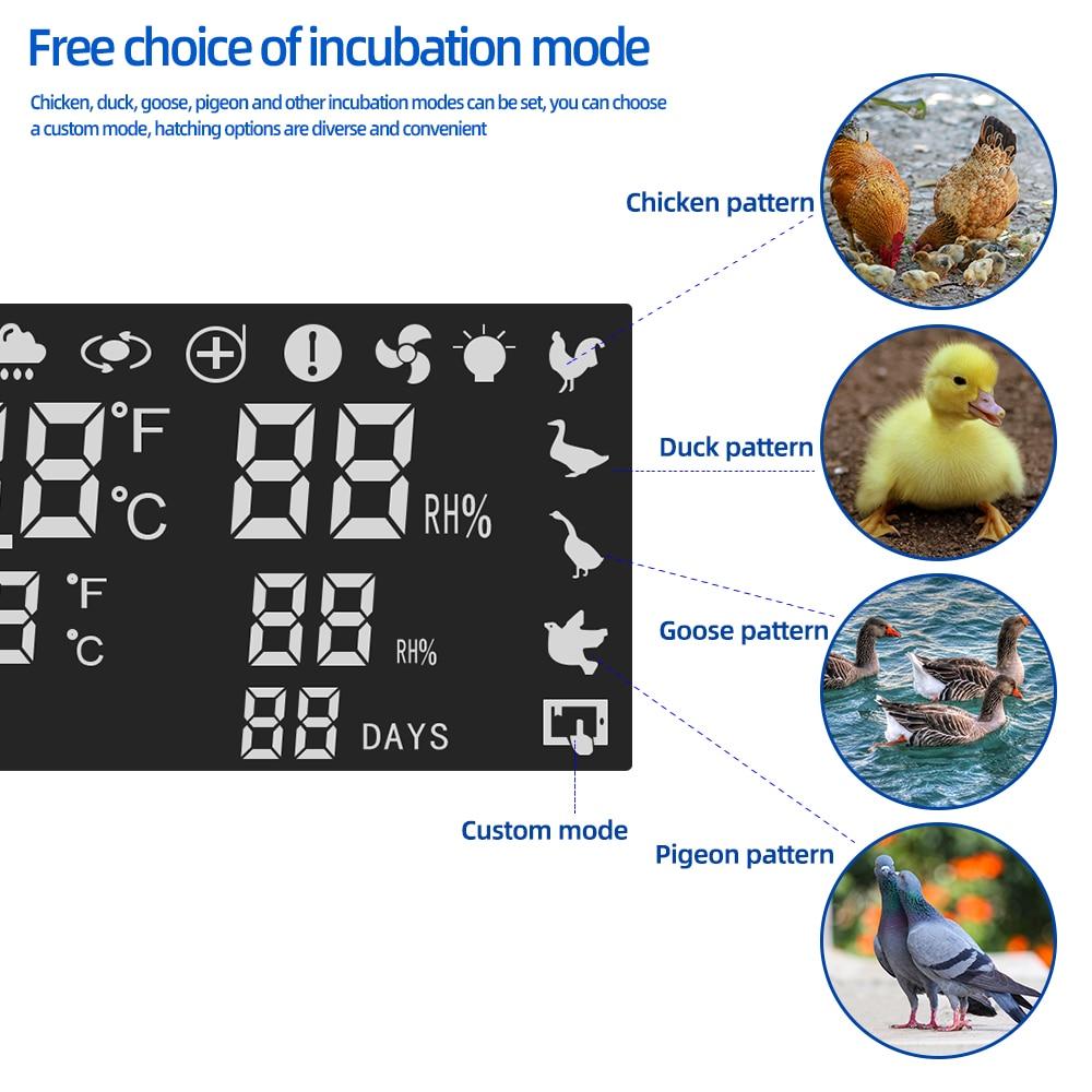 自由选择孵化模式