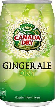 lattine 350ml X24 Questo Canada Dry Ginger Ale