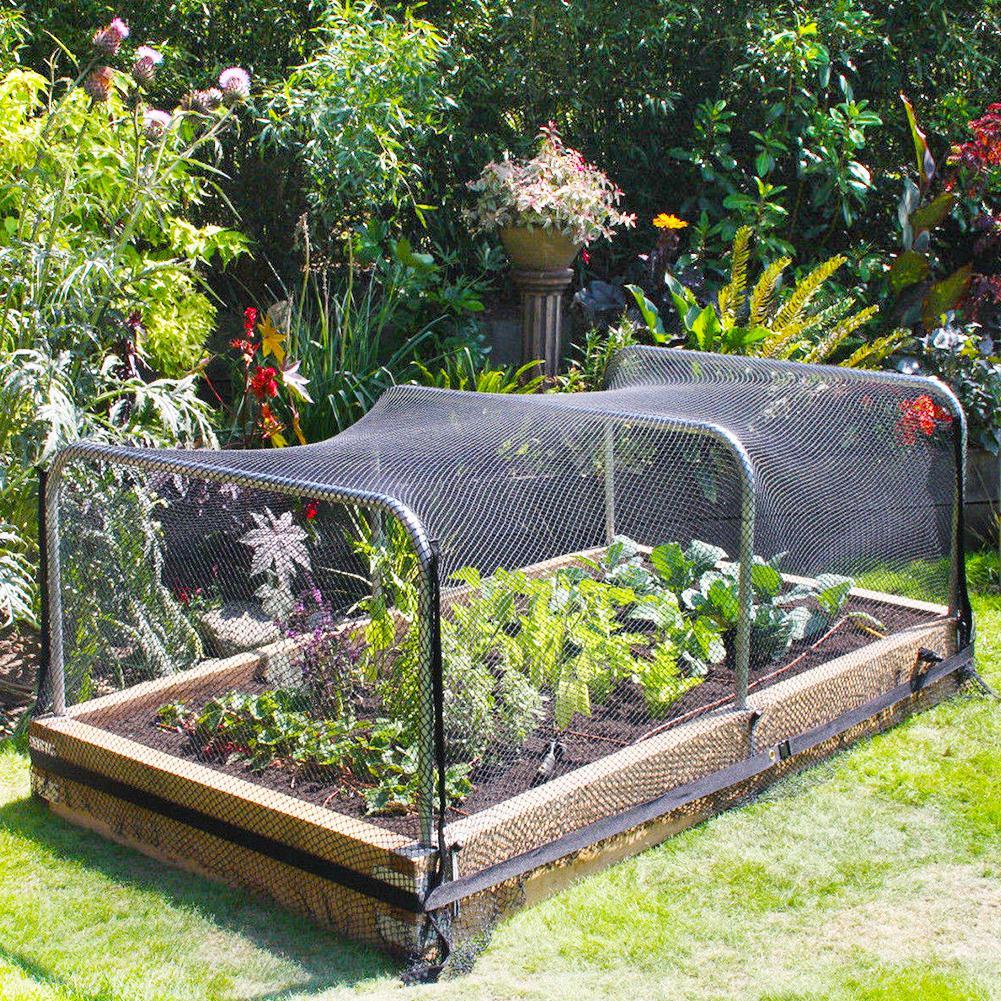 30M Wide x 5M Extra Strong Anti Bird Netting Garden Allotment Doesn% 27t Tangle and Многоразовый Прочный Защита Против Птиц Олень