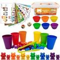 Montessori Spielzeug Box Regenbogen Stapel Tassen Zählen Bears Farbe Gewichte Sensorischen Spielzeug Baby Mintessori Pädagogisches Spielzeug Spiele Kinder