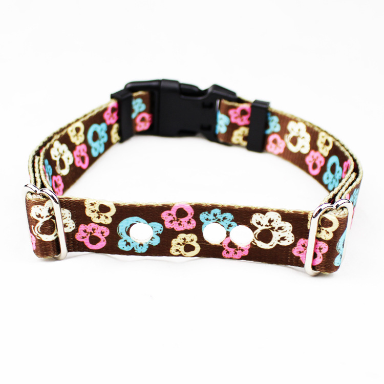 Zhi Fei Qi Supporting Nylon Pet Traction Rope Laser Hole Pet Collar Dog Collar
