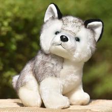 цена на Puppy Plush Toys 10/20cm Cute Simulation Husky Dog Plush Toys Stuffed Doll Kids Plush Toys Baby Husky Dolls