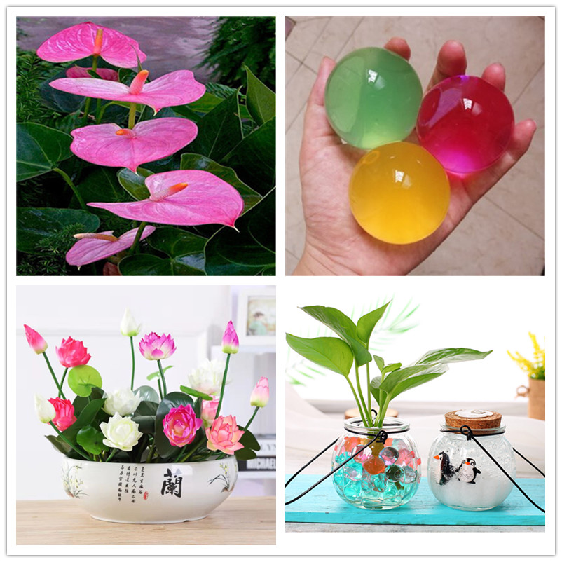 100pcs VIP Christmas Gift The Big MAC Crystal Ball Plants Potted Flowers Bonsai Nutrition Soil, Lotus, Red Palm Rose Water Lily