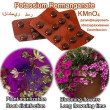24 шт. перманганат калия, стерилизация семян для укоренения, дезинфекция бонсай KMnO4
