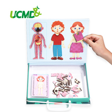 Magnetic Kids Puzzle Human Body Brick Toy 3D Structure Muscle Bone Cognitive Jigsaw Puzzles Biology Learning Educational Toys structure of bone