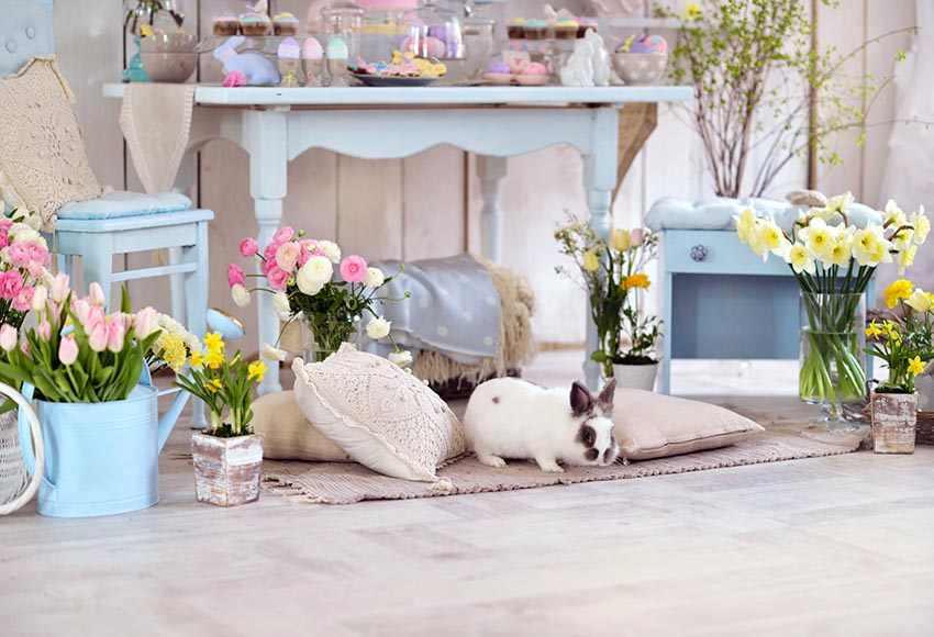 春イースターカラフルな卵写真撮影の背景写真スタジオの背景プロフォトブース新生児ポートレート背景