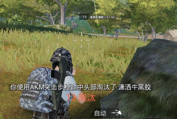 PC和平精英_孽杀透视自瞄辅助破解版v3.22