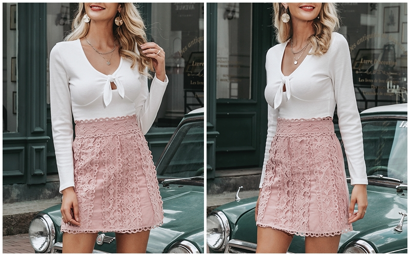Embroidery Cotton A-Line Mini Bottoms Pink Skirt 2