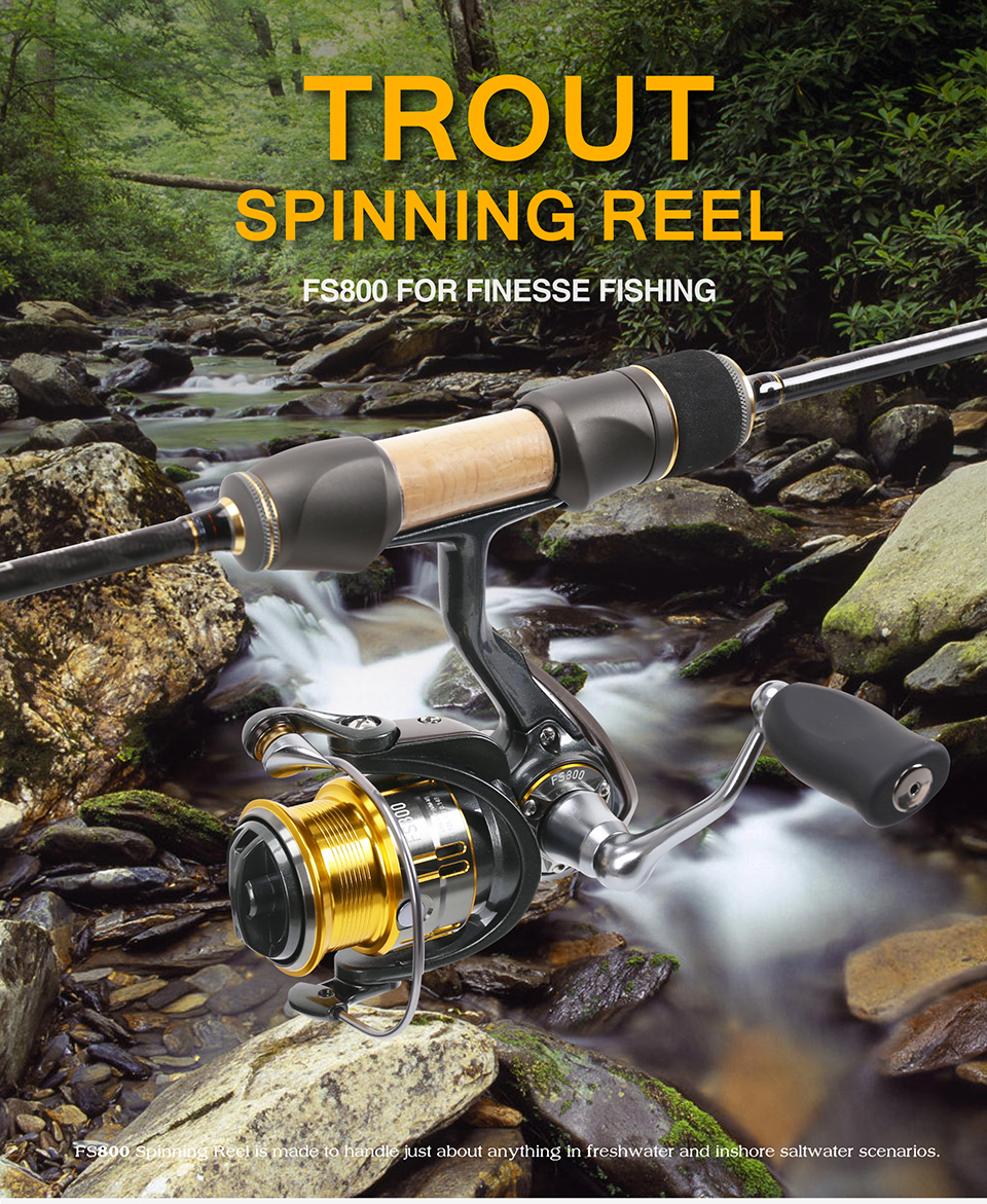 Surfing 800 Reels discount 1