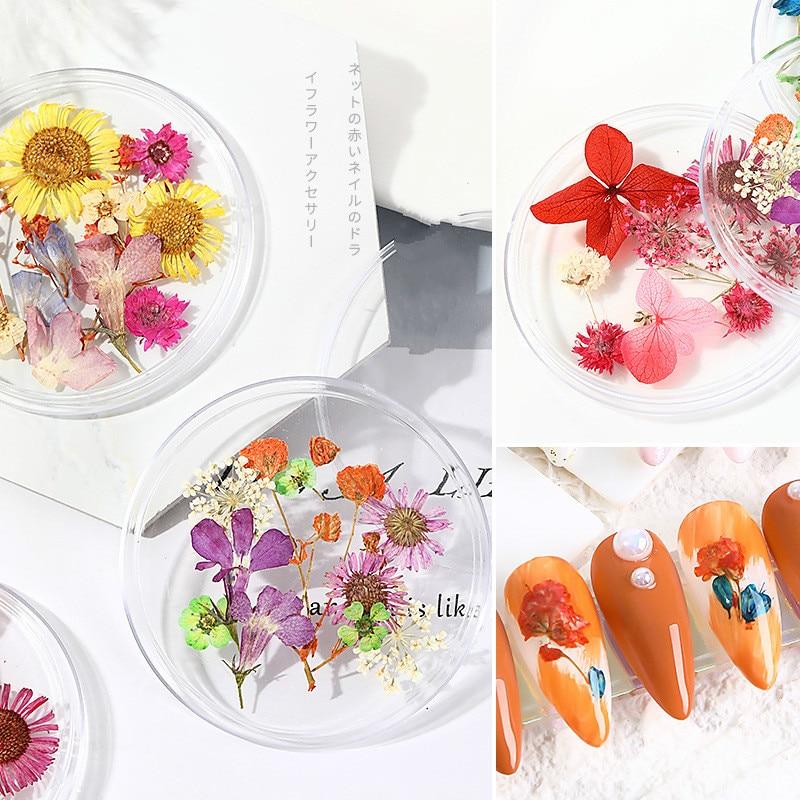 Купить 1 коробка украшения для ногтей высушенные цветы натуральный