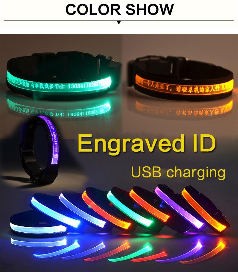 Recargable v/ía USB gatas Mascotas LED USB Silic/ón Collar Luminoso para Perros Tama/ño S-L se Puede Cortar Individualmente a 18-65 cm en Naranja de la Marca PRECORN