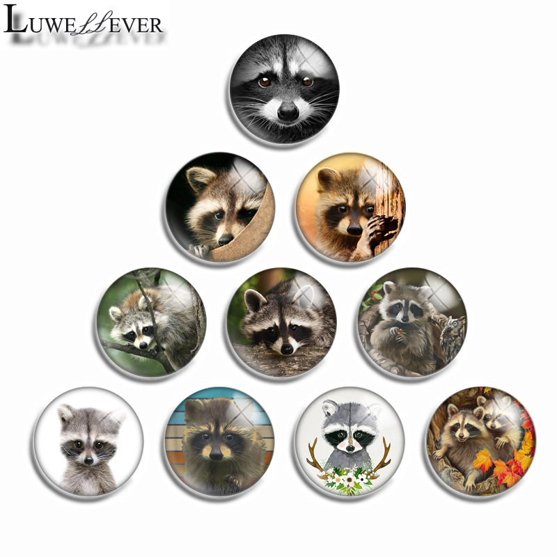 12mm 10mm 14mm 16mm 20mm 25mm 487 Cute Raccoon Mix Round Glass Cabochon Jewelry Finding 18mm Snap Button Charm Bracelet