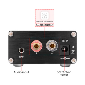 Image 4 - AIYIMA TPA3116 100W Subwoofer wzmacniacz Audio TPA3116D2 Mono cyfrowe wzmacniacze mocy Amplificador z NE5532 OP AMP