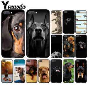Yinuoda black Dachshund Doberman Dog face Phone Case for Huawei Honor 8A 8X 9 10 20 Lite 7A 5A 7C 10i 9X pro Play 8C(China)