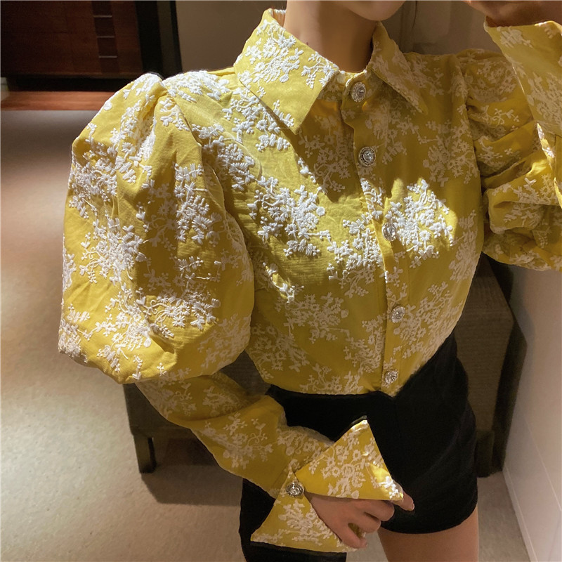 H6ab40a0564fc48019866ecf24f242842Y - Spring / Autumn Turn-Down Collar Puff Long Sleeves Embroidery Floral Blouse